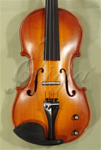 Picture of Electric Violins GENIAL 1